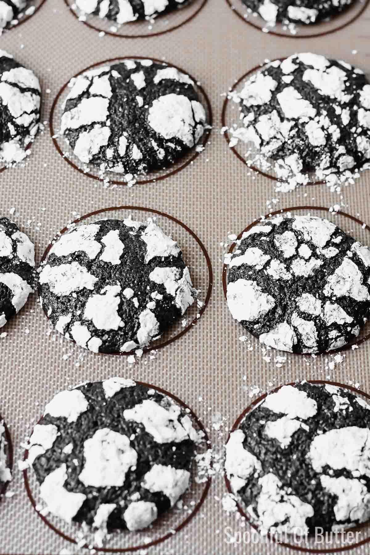 Black Cocoa Cookies on baking sheet