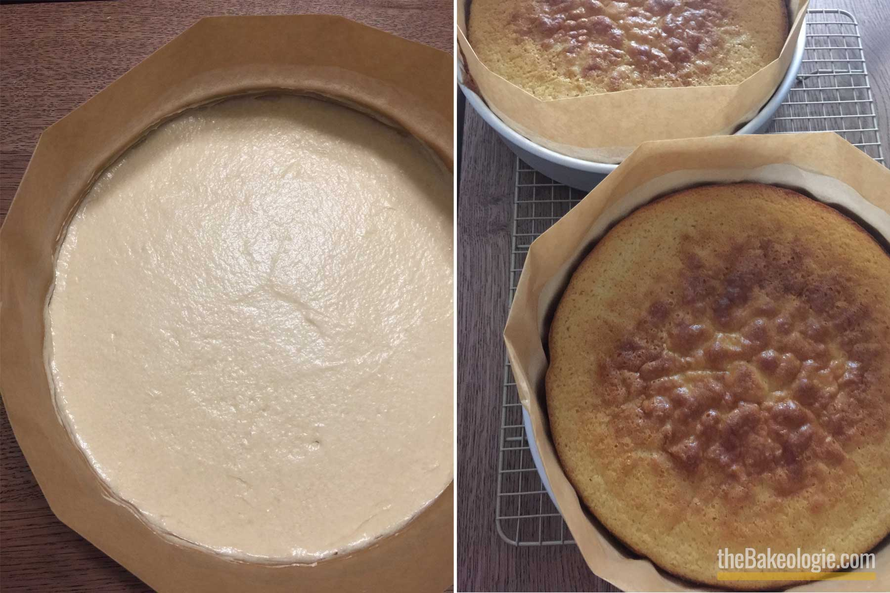 Vanilla Cake Batter in baking pan with parchment paper
