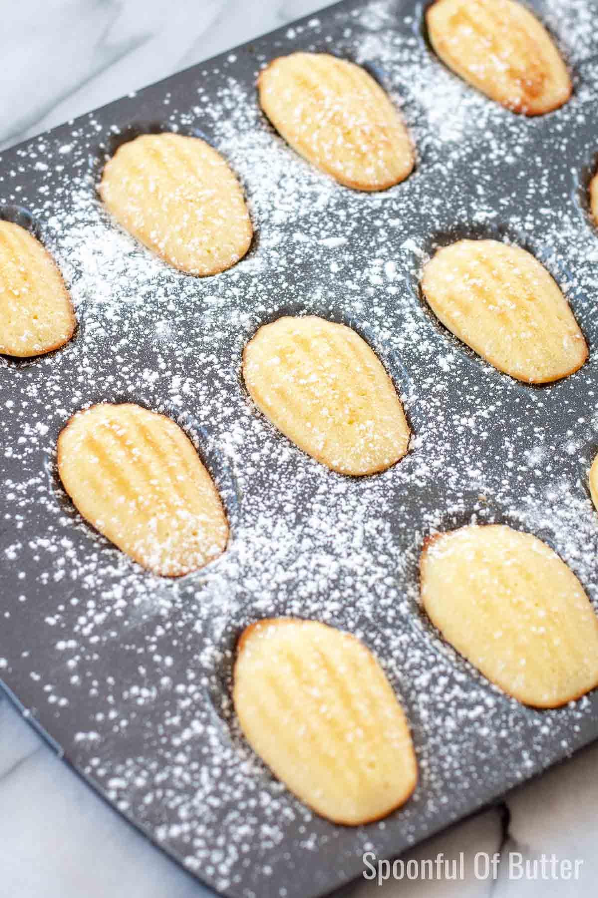 Madeleines on baking pan